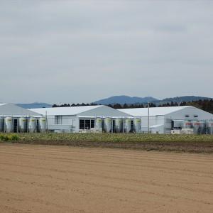 壱本松農場
